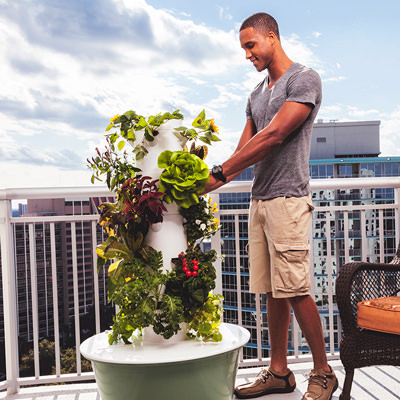 Maintaining Your Tower Garden